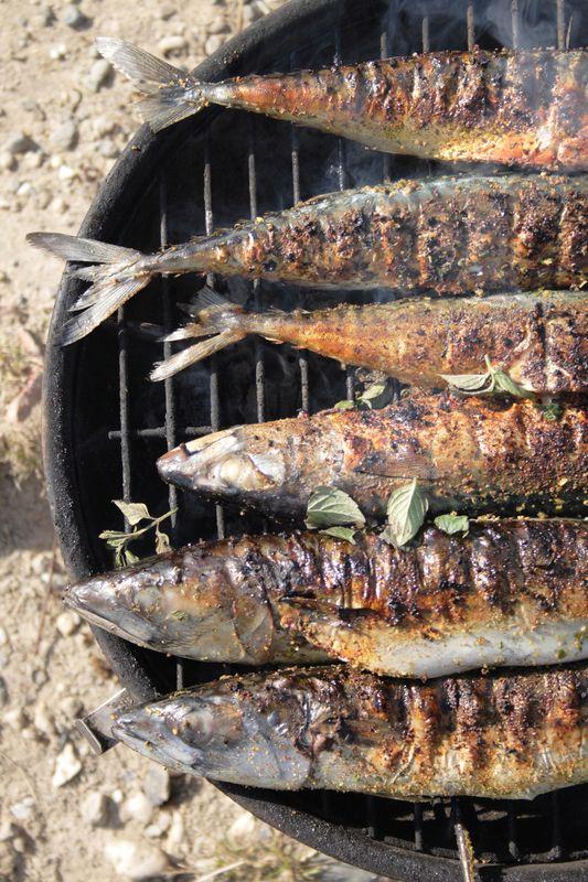 Grilované makrely |