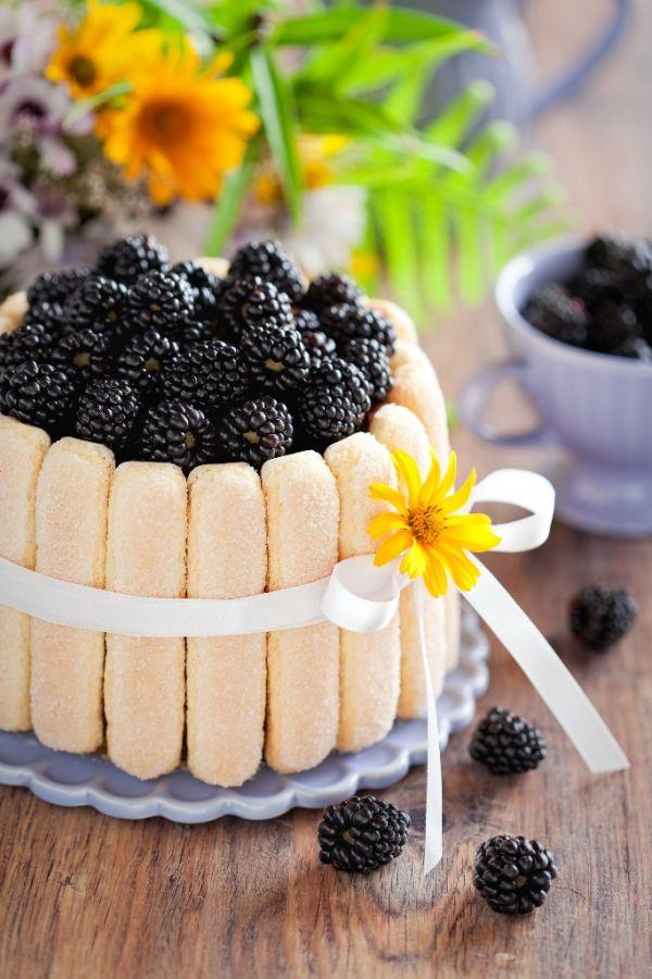Tvarohová nepečená torta s černicami |