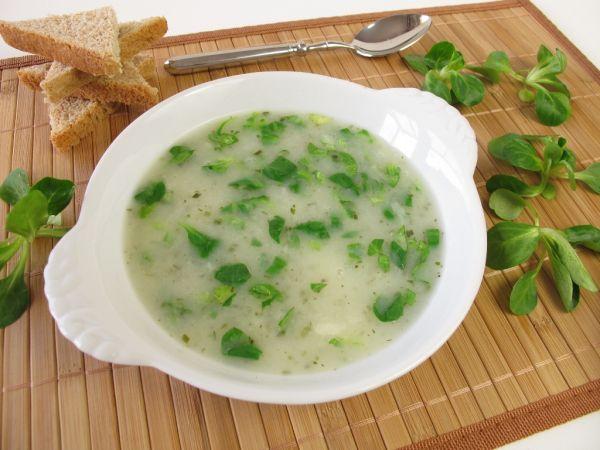 Šalátová polievka |