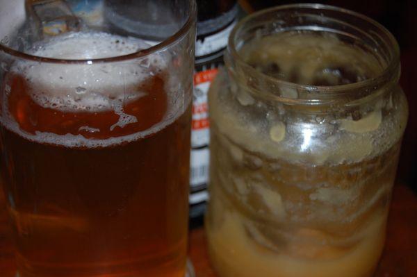 Pivo s medom |