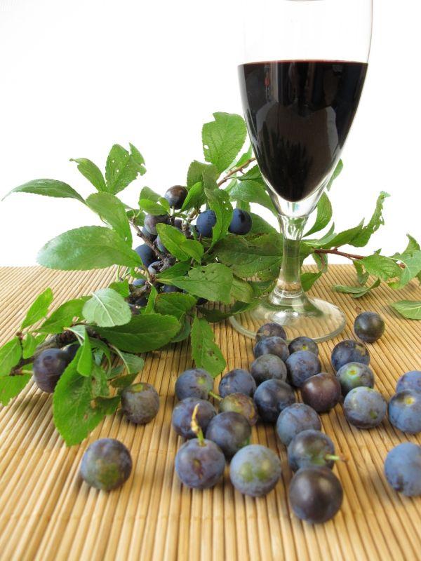 Trnkové víno |