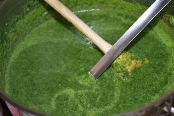 Špenátová polievka bez smotany |