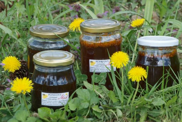 Púpavový med s bylinkami a včelím peľom |