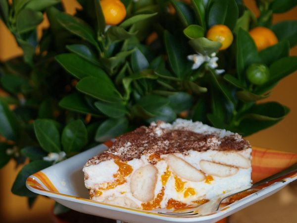 Nepečená mandarínková torta |