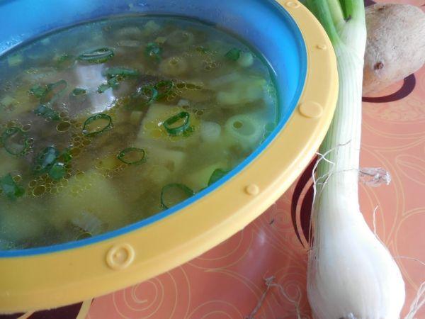 Zemiaková polievka s jarnou cibuľkou |