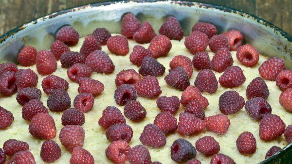 Smotanová torta s piškótami a ovocím |