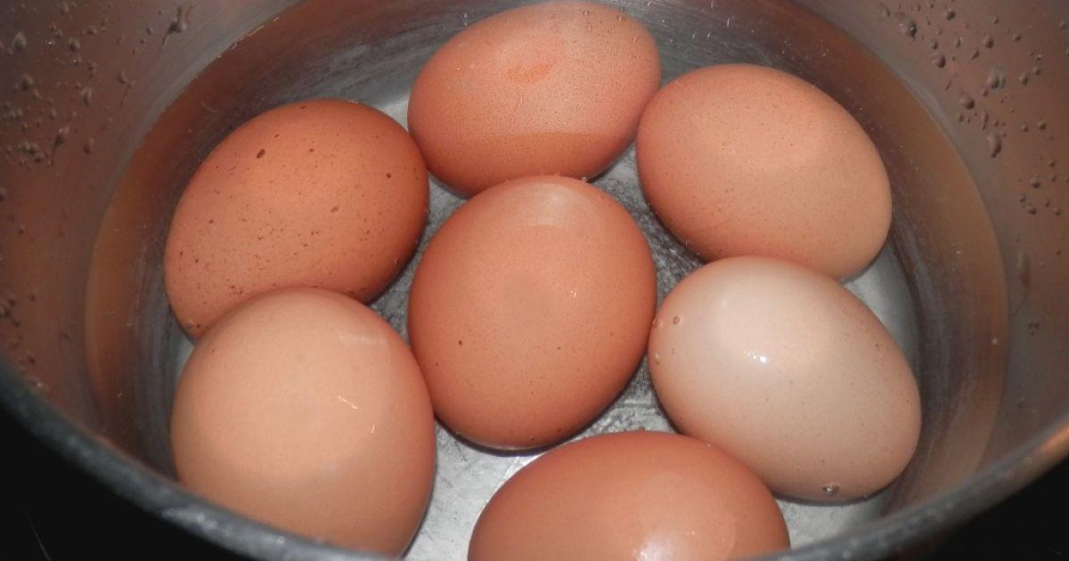 Vajíčková tlačenka, fotogaléria 3 / 19.