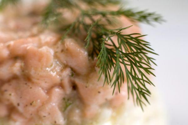 Rybacia nátierka z lososa a makrely |