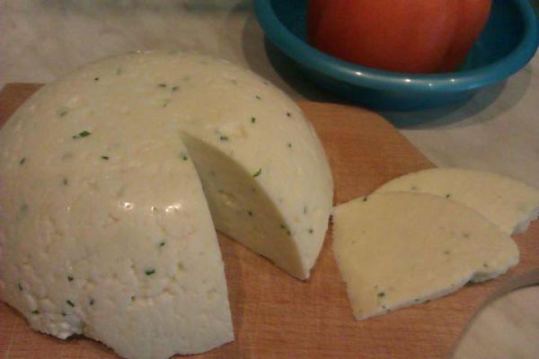 Tvarohový syr bez syridla |