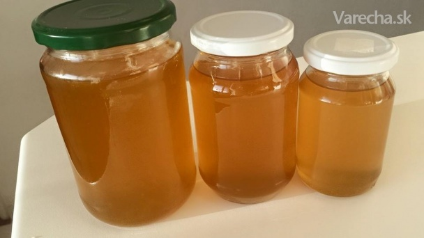 Púpavový med (fotorecept)  Recept